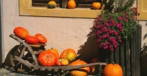 Décorer l'extérieur de sa maison selon les saisons dans déco courges-300x156